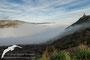 Niebla y Torre de Santa Eulalia la Mayor