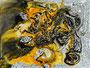 Acryl auf Dibond - 104x79 - BS149