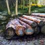 0720_201_piled_oil_mdf_17x17