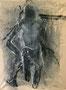 VENUE   I   35 X 27 cm   I   acrylique sur toile   I   2016