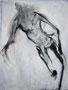 COURSE   I   35 X 27 cm   I   acrylique sur toile   I   2013