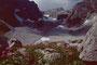 Hochgletscheralp - Braunarlspitze mit eingelagertem Gletscher in der Ostflanke