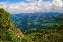 Blick vom Kamm der Niedere nach Norden auf Sibratsgfäll und Allgäuer Nagelfluhkette