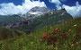 Mohnenfluh, Mohnensattel (links vom Gipfel)  und Auenfeldsattel von Osten vom Weg zur Bürstegg