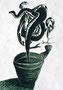 「花の種を埋めたのに? 」 キム・ギチョン 尼崎朝鮮初中級学校