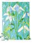 「春の花」 リ・ウィリ 生野朝鮮初級学校