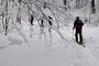 wunderschöne Winterimpressionen im Aufstieg Richtung Hinterweissenstein