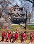 さくら部門入賞 1047「お城の散歩道」横山稔