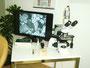 Dunkelfeld-Mikroskop mit Bildschirm