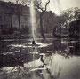 Der Teich mit Fontäne um 1956, Archiv Wolfgang Stobbe