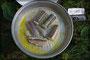 unser Mittag - gebratener Aal
