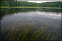 Einlauf des Sysdroy Sees