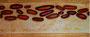"""""""Sweeties"""" 3, Mischtechnik, Acryl, Sand, Pastellkreide, Pigmente"""