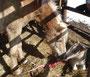 Loris Fohlen ganz neu auf die Welt gekommen