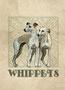 Whippet 6 (©Manializa)