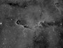 "Der ""Elefantenrüssel"" (IC1396) im Sternbild Kepheus am 06.04.2013, TEC 140mm APO mit TEC 4""-Flattener auf WS240GT, Atik 383 L+, 12x1200sec durch Baader 7nm H-Alpha-Filter"
