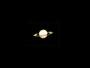 Saturn am 05.06.2008, Meade ETX-90 PE, SPC900NC, 3x Barlowlinse, 20 aus 2.000 Bilder (352x288), S/W-Aufnahme nachkoloriert