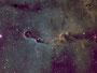 """Der """"Elefantenrüssel"""" (IC1396) im Sternbild Kepheus am 20.04.2013 in der HST-Palette, TEC 140mm APO mit TEC 4""""-Flattener auf WS240GT, Atik 383 L+, R: 15x1200sec Baader SII-Filter, G: 12x1200sec Baader H-Alpha-Filter, B: 12x1200sec Baader OIII-Filter"""