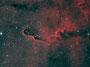 "Der ""Elefantenrüssel"" (IC1396) im Sternbild Kepheus am 20.04.2013 in Bicolor (Ha/OIII), TEC 140mm APO mit TEC 4""-Flattener auf WS240GT, Atik 383 L+, 27x1200sec, Baader H-Alpha-Filter, Baader OIII-Filter"