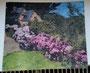 Isle de Brehat 2. Aquarellbearbeitung eines Fotos für einen Videoclip