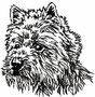13980 Westhighland Terrier
