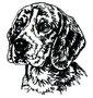 02500 Beagle