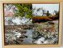 Fotocollage Darss Strandansichten 2012 30x40 cm Preis 70,- €