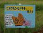 小学生が書いた保護を訴える看板 E-3 ZD 50mm+EC-14