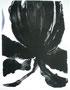 Floreciendo 80x70 Litografía 2004