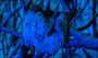 im Nocturama bei einer tropischen Vollmondnacht. (Aufnahmedetails: ISO 3200, f 2.8, tv 1/10 ohne Stativ