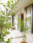 2012 米松の家