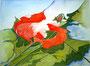 Rote Blüte / 40x30cm