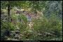 waterval, Noorder Dierenpark Emmen