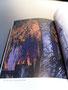 """J.R.R. Tolkien """"Das Silmarillion"""" illustriert von Ted Nasmith als Ledereinband"""