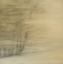Wintertime / 2017 / Öl auf Leinwand / 100x100cm