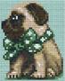 Bouledogue nœud vert