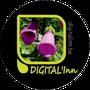 digitalinn.be