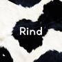 Produkte vom Rind