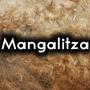 Mangalitza