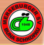 MSV Buna Schkopau