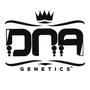 DNA Genetics Femminizzati