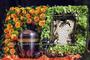 Lebensbuch komplett gesteckt / für Bild- oder Urneneinsatz geeignet / SMITHERS-OASIS Company Floral Foam. All rights reserved.