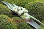 Brauttischgesteck auf Agaveblättern
