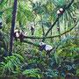 Pandawald/ 2020/ oil on canvas/ 180 x 240cm