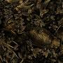 Antonius - MAGIC GARDEN - M DER KÖNIG IST TOT... ES LEBE...MAGIC GARDEN - M DER KÖNIG IST TOT... ES LEBE..., Pigmentprint auf Papier matt, 80x60 cm, 2013
