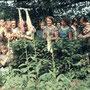 Biologie mit Sw.M. Ildephonse 1955