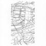 120712 - 2012 - Bleistift - 30 cm x 21 cm