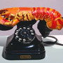 Lobster Telephone, 1936, assemblage, telephone and painted plaster, Rotterdam, Museum Van Beunigen