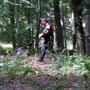 Schutzdienst im Wald
