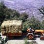Fiat 411R Traktor (Quelle: Centro Storico Fiat)